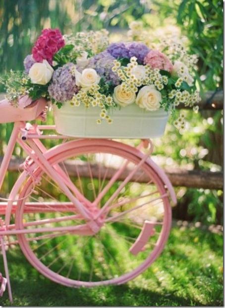 pinkbike (437x598)